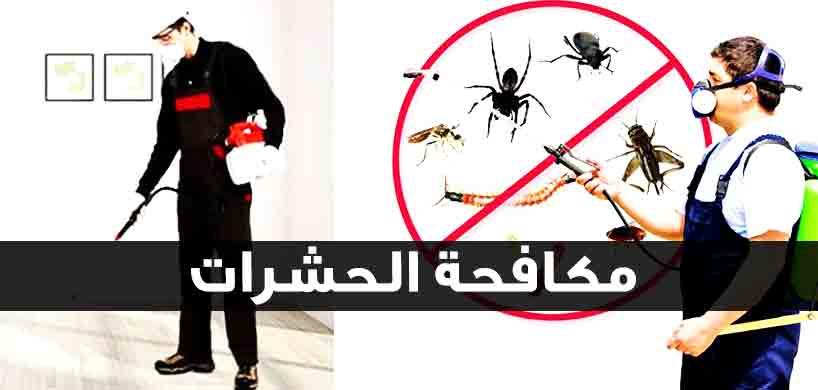 شركة مكافحة حشرات بالحرجة  0553141080  اتصل بنا الان